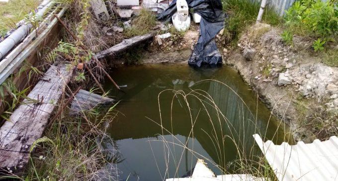 Nuevo plan en Pitalito para lucha contra el dengue