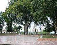 En Saladoblanco, Alcaldía frustró robos informáticos