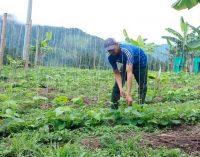 Nueva línea de crédito para el sector agrícola colombiano