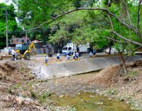 Intervención ambiental en la Avenida La Toma