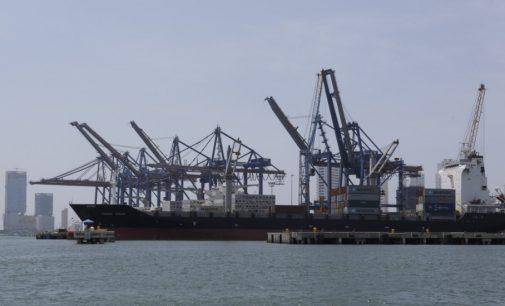 Más de 4.000 millones de pesos en productos agrícolas nacionales han sido exportados