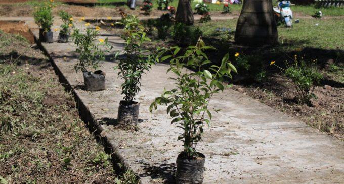 Cumplido Día Mundial del Medio Ambiente en Pitalito