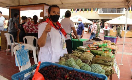 Mercados campesinos serán institucionalizados